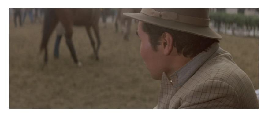 テレビ版「男はつらいよ」を手掛けた小林俊一監督の作品