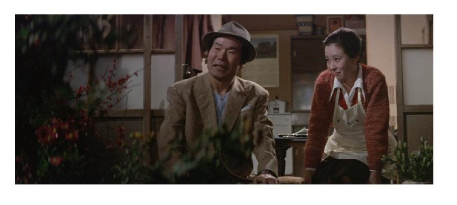 映画「男はつらいよ 寅次郎恋歌(第8作)」の作品解説