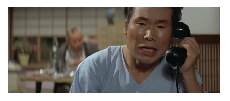 映画「男はつらいよ 私の寅さん(第12作)」の作品解説