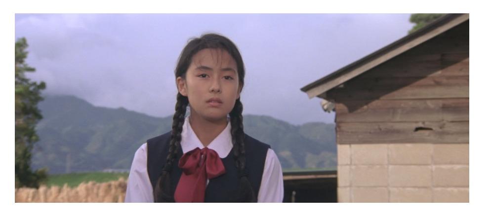 42作~45作、48作目満男のマドンナ:及川泉(女優名:後藤久美子)