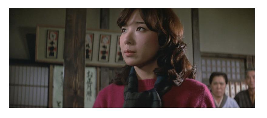 26作目マドンナ:水島すみれ(女優名:伊藤蘭)