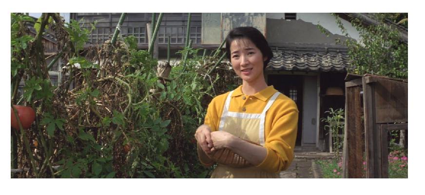 42作目マドンナ:奥村寿子(女優名:檀ふみ))